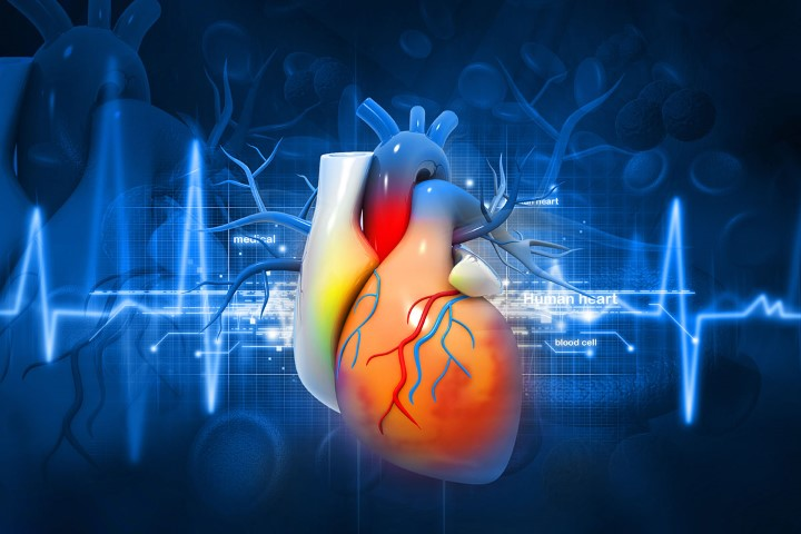 TAVR is an alternative to open heart surgery